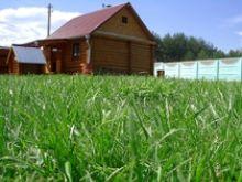 Аэратор для газона – для чего он нужен и как его использовать.