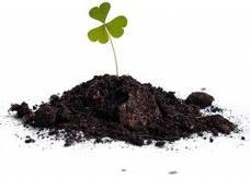 Минеральные и органические удобрения для газона.