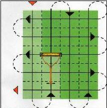 Схема подкормки газона