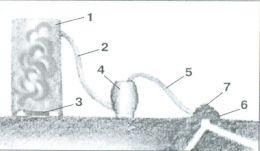 Схема борьбы с кротами