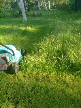 Стрижка высокой травы