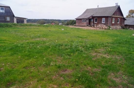 gazon v belorussii