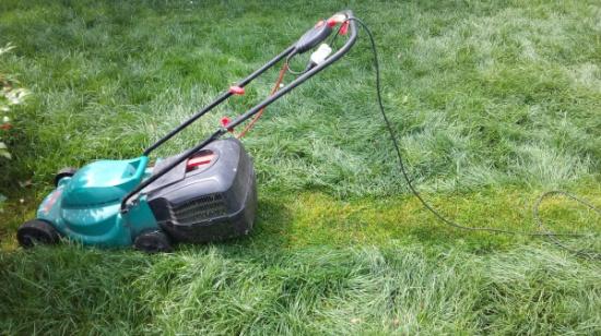 Переросший газон