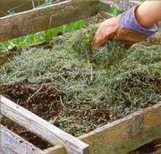 Компостирование травы