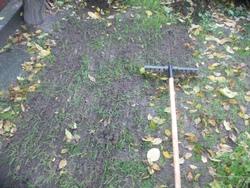 Очистка газона от мусора, войлока и мхов